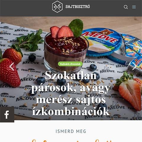 Pentacom referencia - Sajtbisztró, webfejlesztés